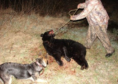 bear hunt 08 013