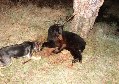 bear hunt 08 014