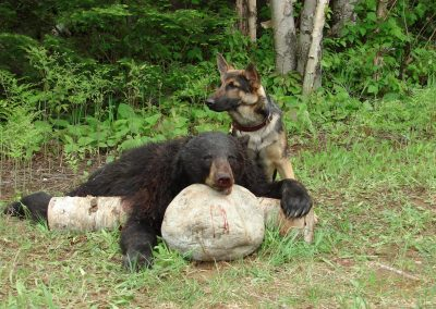 bear hunt 08 115