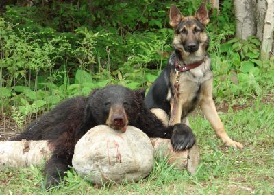 bear hunt 08 116