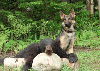 bear hunt 08 120