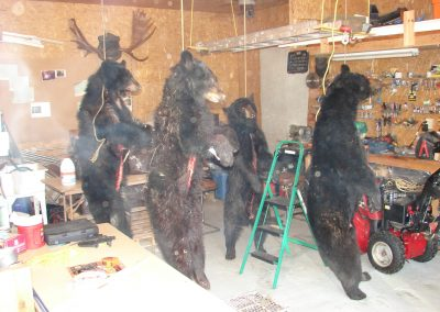 bear hunt 08 176