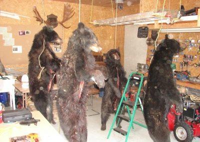 bear hunt 08 183